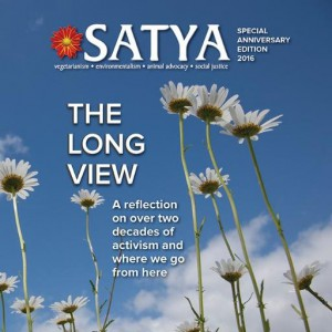 satya_the_long_view_cover