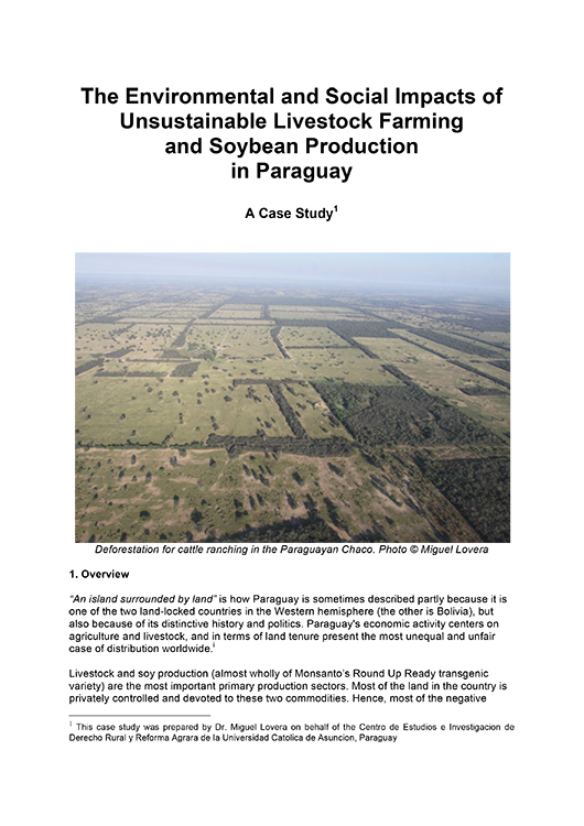 Soybean Production in Paraguay